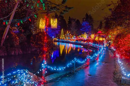 Christmas Lights Reflection Van Dusen Garden Vancouver BC Canada