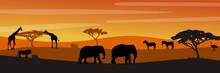 African Savanna Landscape. Wild Animals In National Park. Safari Travel Concept.