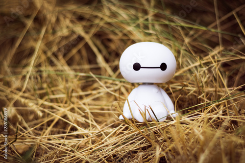 Photo Baymax
