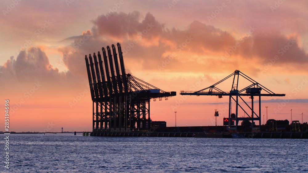 Fototapeta Container terminal at red colored sunset in Port of Antwerp, Belgium
