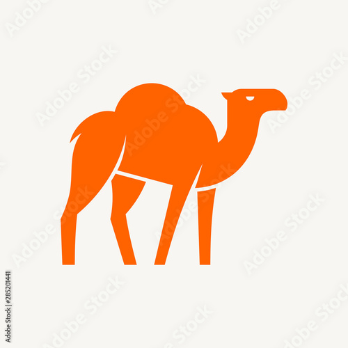 Photo Camel logo. Icon design. Template elements