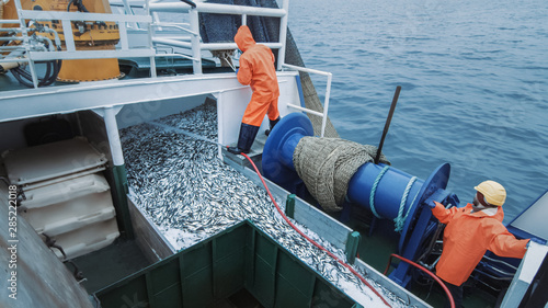 Canvas Print Crew of Fishermen Open Trawl Net with Caugth Fish on Board of Commercial Fishing