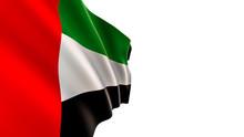 United Arab Emirates Flag, Iso...