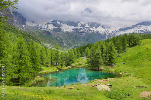 Garden Poster Road in forest Summer alpine landscape on the Blue Lake (Lago Blu) near Breuil-Cervinia, Aosta Valley, Italy