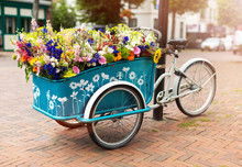 Cargo Bike With Flowers, Holla...