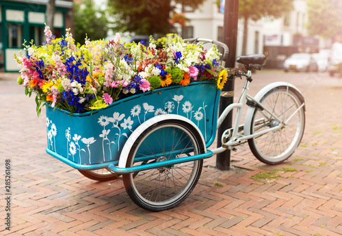 Fond de hotte en verre imprimé Velo Cargo bike with flowers, Holland, Europe