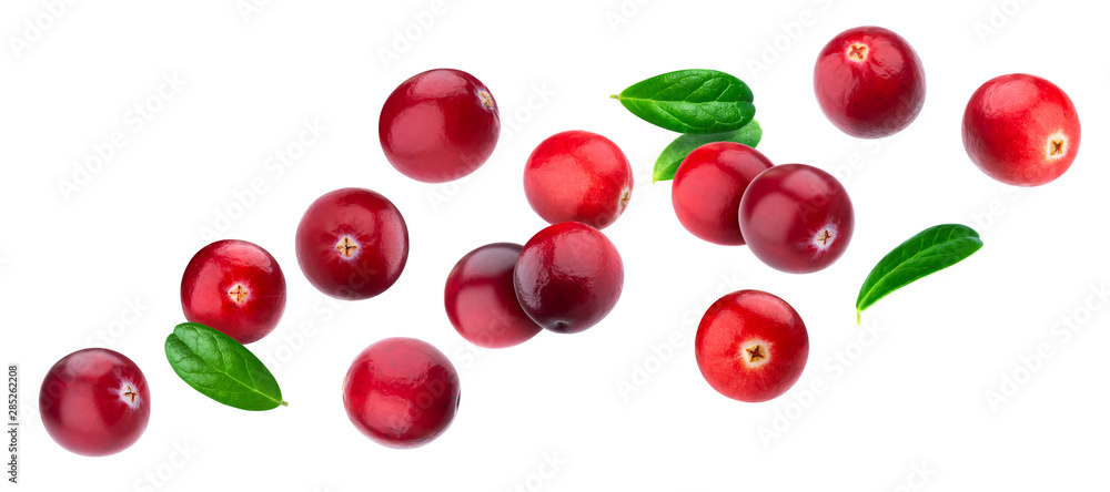 Fototapeta Cranberry isolated on white background with clipping path