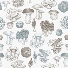 Mushrooms Seamless Pattern. Vector Hand Drawn Illustrations. Mushroom In Retro Style. Autumn Food Background.