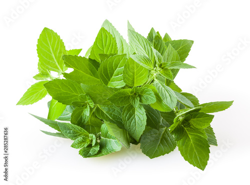 Obraz Fresh mint leaves isolated on white background - fototapety do salonu