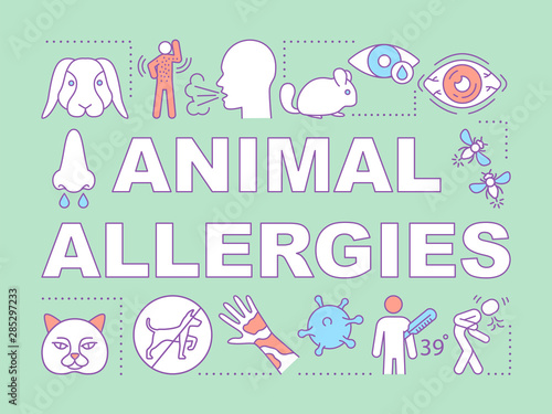 Vászonkép Animal allergies word concepts banner