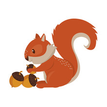 Squirrel Eating Nut Cartoon An...