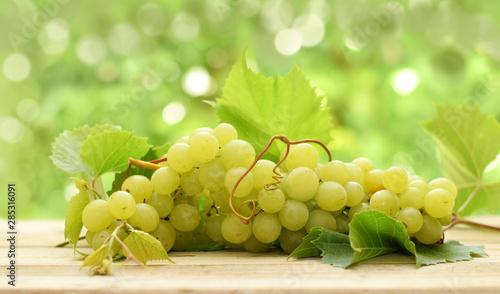 Pinturas sobre lienzo  White bunch of ripe grape on blurred green background