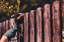 Old Fence's Renovaiting Proces...
