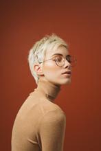 Beauty Studio Portrait Of A Woman