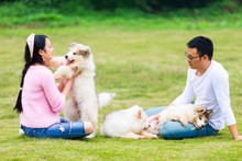 Young Couple Sitting On The Lawn With Their Puppy Dog Outdoor In The Park