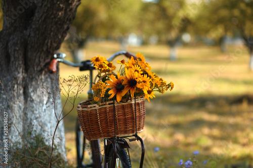 Türaufkleber Fahrrad romantic retro bike with basket full of flowers in rural landscape