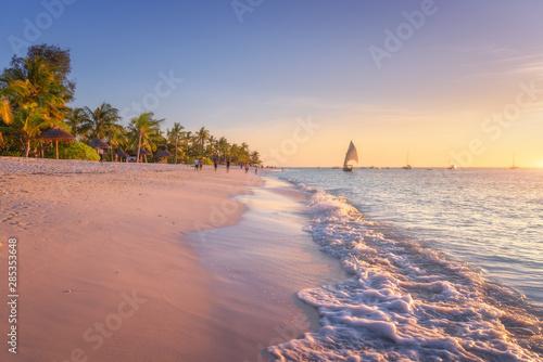 Obraz Piaszczysta plaża z falami morskimi, palmami. Podróż po egzotycznej Afryce - fototapety do salonu