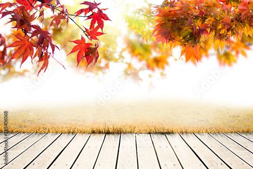 Poster Autumn 가을배경