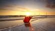 canvas print picture - Herbstgrüße vom Wattenmeer