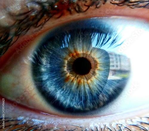 Cuadros en Lienzo  eye iris