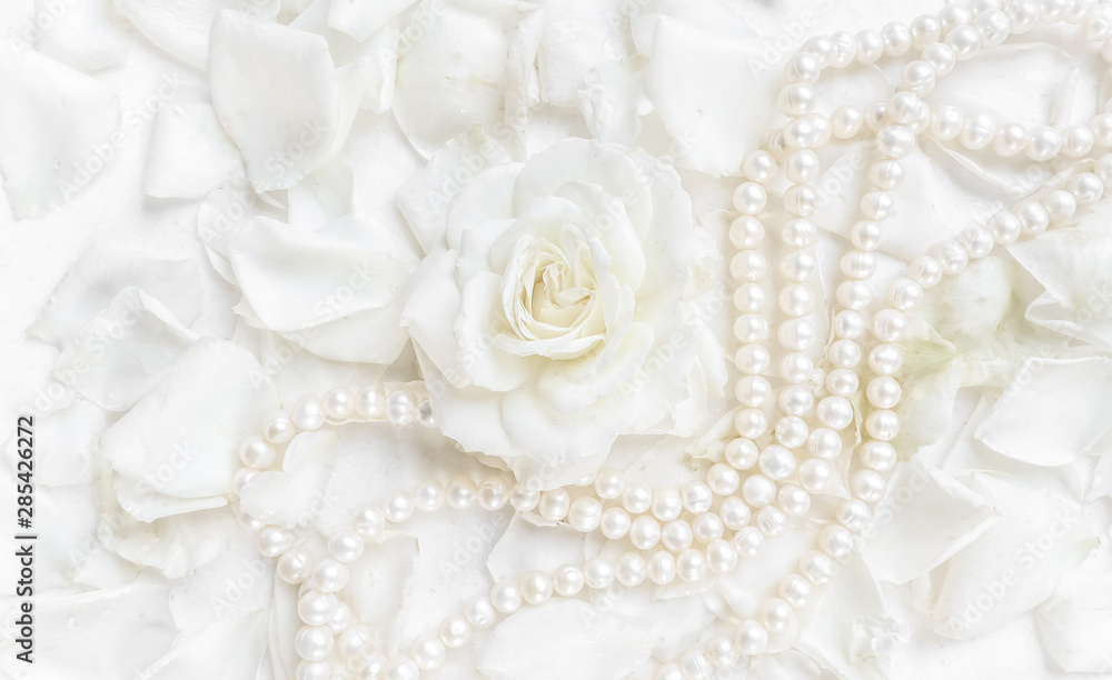 Fototapety, obrazy: Beautiful white rose with petals and pearl necklace on white background. Ideal for greeting cards for wedding, birthday, Valentine's Day, Mother's Day