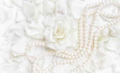 Beautiful white rose with petals and pearl necklace on white background. Ideal for greeting cards for wedding, birthday, Valentine's Day, Mother's Day