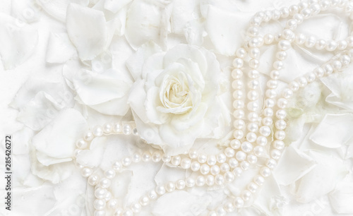 Leinwand Poster  Beautiful white rose with petals and pearl necklace on white background