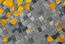 Autumn Yellow Leaves On Gray Old Stone Pavement Top View