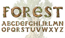 Antique Wood Font For Forest Posters. Decorative Ancient Alphabet. Vintage Typeface. Double Exposure Trees And Branches. Editable And Layered. Hand Drawn Vector Modern Letters For Banners.