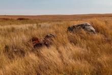 Rocky Grasslands