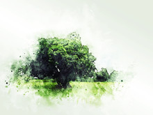 Abstract Colorful Shape On Tree And Field Landscape Watercolor Illustration Painting Background.