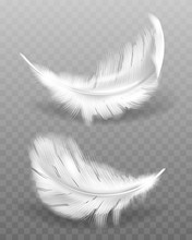White Fluffy Feather With Shadow Vector Realistic Set Isolated On Transparent Background. Feathers From Wings Of Birds Or Angel, Symbol Of Softness And Purity, Design Element