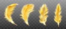 Golden Yellow Fluffy Feather V...