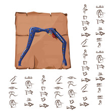 Ancient Egypt Papyrus Or Stone...
