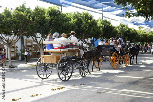 Платно horse carriage concurso de enganches de carruajes de coches de caballos feria de