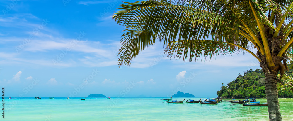 Fototapeta Amazing view of beautiful beach with traditional thailand longtale boats and palm tree. Location: Ko Phi Phi Don island, Krabi province, Thailand, Andaman Sea. Artistic picture. Beauty world.