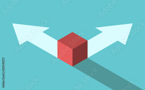 Isometric cube, two options Canvas Print