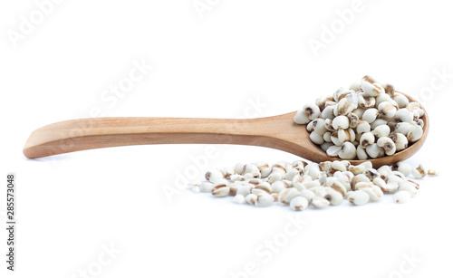 Fotografie, Obraz  Job's Tears on white background