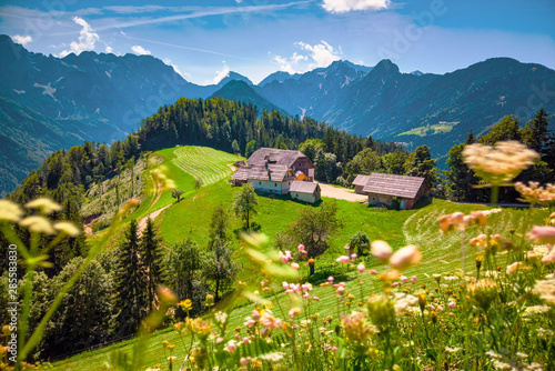 Photo Mountain landscape, Alps in Slovenia with farm and blooming meadows