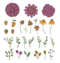 Vector Floral Clip Art Set. Ha...