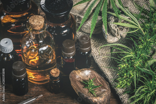 Obraz CBD oil bottles and green plant of cannabis on a wooden background. Herbal medicine. - fototapety do salonu