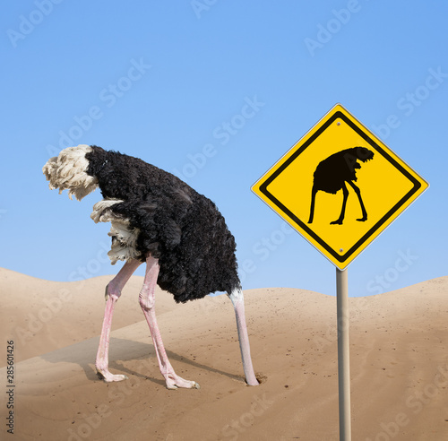 Stickers pour portes Autruche ostrich with head hidden in sand with warning traffic sign