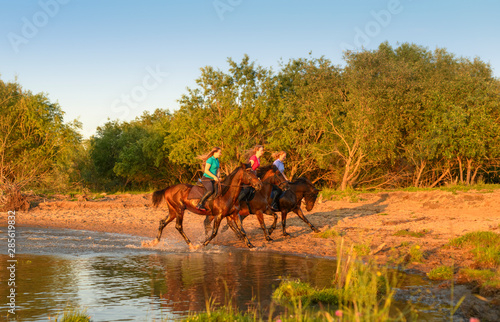 Three joyful horsewoman are astride their bay horses on the riverbank in summer Canvas Print