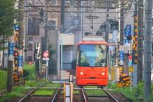 都電荒川線(東京さく...