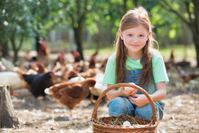 Young Girl Holding Chicken Eggs  From A Wicker Basket On A Farm With Chickens In The Background
