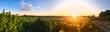 Leinwandbild Motiv Couché de soleil dans les vigne en Anjou