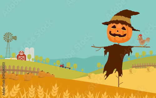 Halloween day background with wheat, harvested pumpkins, straw bale, farm field, barn and Jack-'o-lantern scarecrow. Vector illustration.
