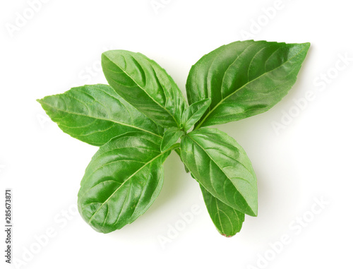Fotografiet Top view of fresh basil leaves