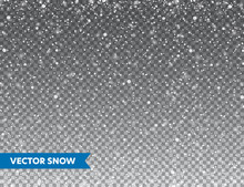 Realistic Falling Snow With Snowflakes. Winter Transparent Background For Christmas Or New Year Card. Frost Storm Effect, Snowfall, Ice. Vector Illustration.