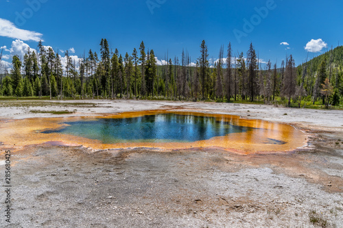 Fototapeta Emerald Pool  in Black Sand Basin in Yellowstone